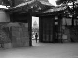 50. - 60. gadu Japāna