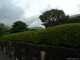 arashijama_044