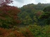 arashijama_047
