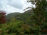 arashijama_048