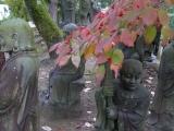 arashijama_079