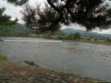 arashijama_092