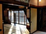 bonsai_hamasaka_004