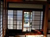 bonsai_hamasaka_005