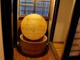 bonsai_hamasaka_011