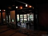 bonsai_hamasaka_014