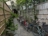 ueno_parks_vecpilseta_015