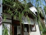 ueno_parks_vecpilseta_039