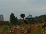 ueno_parks_vecpilseta_044