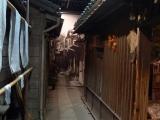 ueno_parks_vecpilseta_053