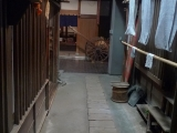 ueno_parks_vecpilseta_057