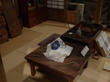 ueno_parks_vecpilseta_067